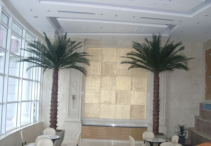 Large Indoor House Trees: Best 25+ Indoor Palm Trees Ideas On Pinterest