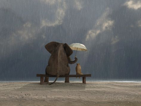 Elephant  holds an umbrella over a dog in this cute anthropomorphic work by artist Mike Kiev.