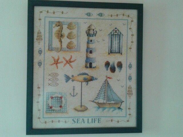 Sea life 2005