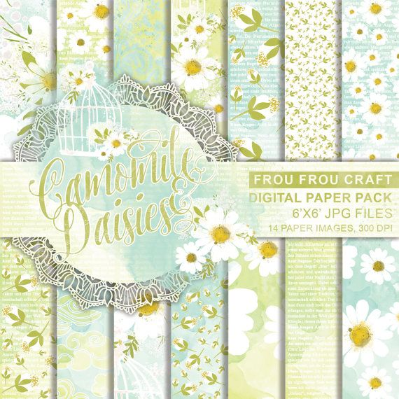 Camomile Daisies Digital Paper Pack Instant by froufroucraft