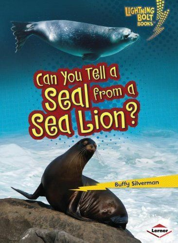 141 Best Images About Arctic Antarctic Seal Sea Lion