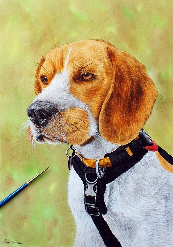 Beagle Puppy In 2020 Dog Portraits Watercolor Paintings Of