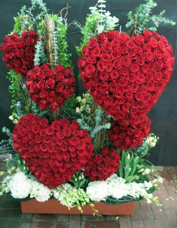 Pin By Jo Zdziarska On Guller Laleler Ve Cicekler Valentines Flowers Flowers Flower Show