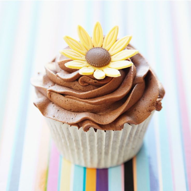 Découvrez la recette du cupcake chocolat facile