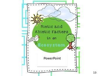 Biotic and Abiotic Factors in an Ecosystem:... by Joyful Rigor with Ms Jones | Teachers Pay Teachers