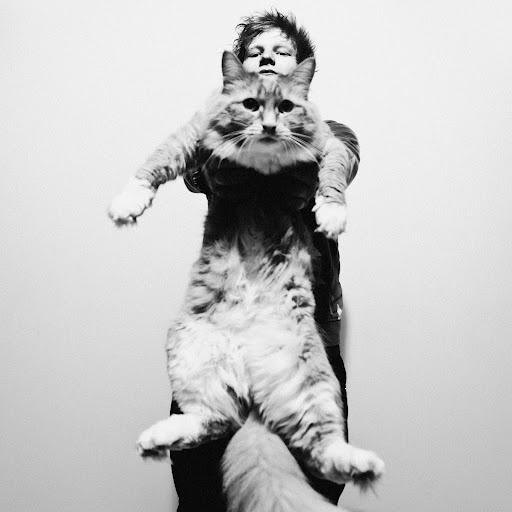 Ed Sheeran.. And a cat- LOVE.