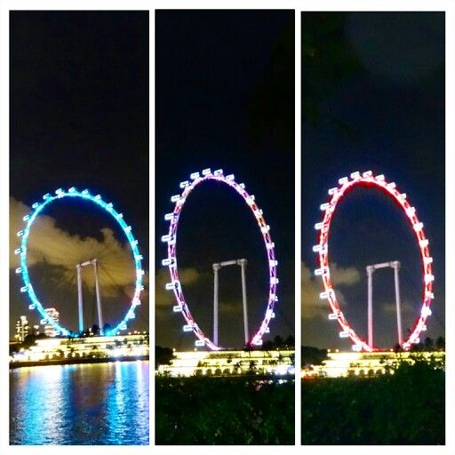 The iconic wheel on spore