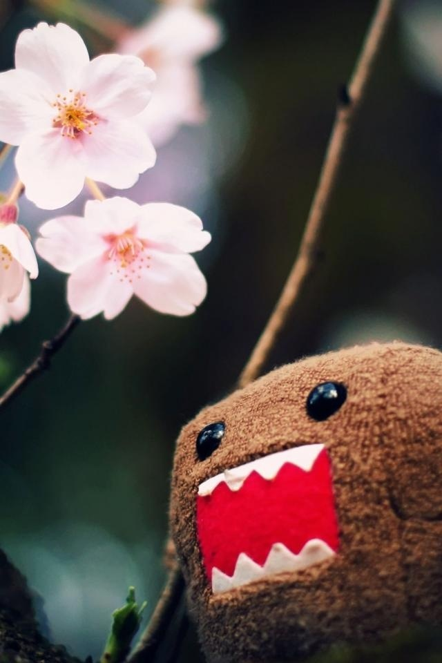 29 Best Domo Kun Images On Pinterest