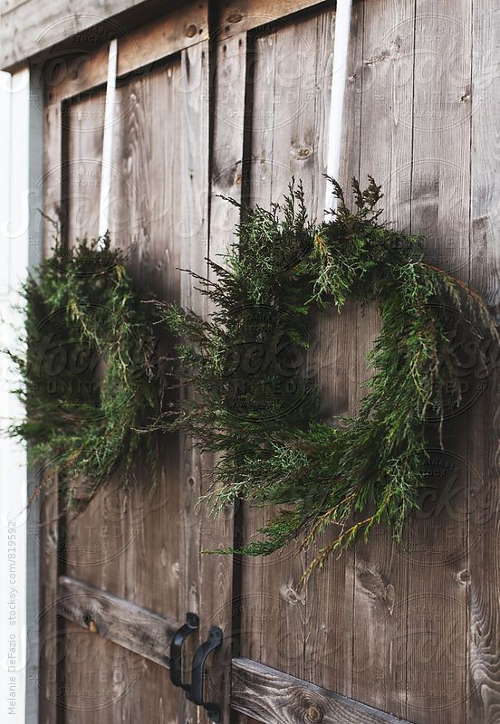 Beatuifully made natural pine and cypress wreaths hanging on barn doors for the holiday season