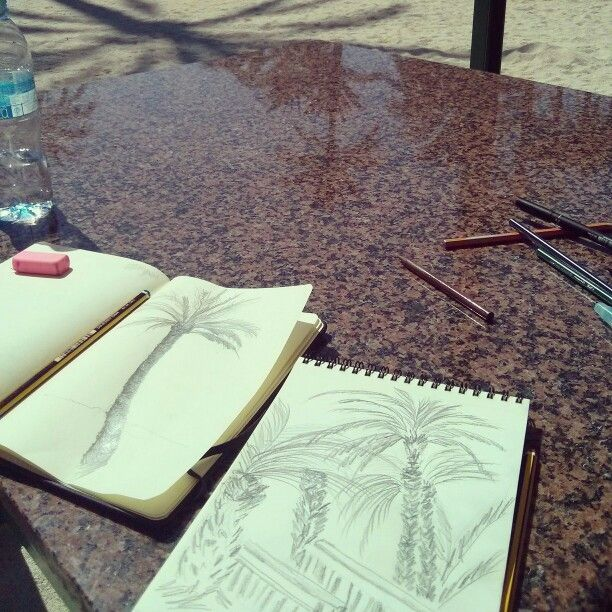 Palm sketches.  Elche. By Littleno.