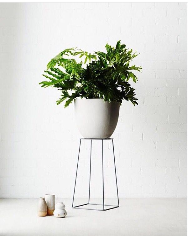 Grey pot, plant stand