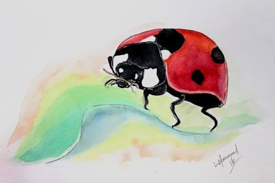 Water Colours - My Site