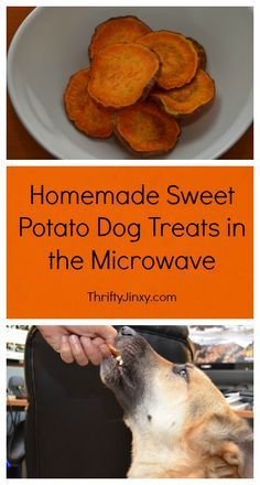 Easy Homemade Sweet Potato Dog Treats in the Microwave - Thrifty Jinxy