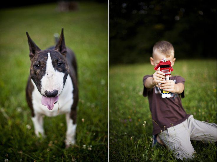 kamarian photography / dog