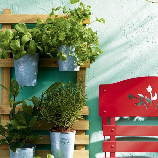 Tin pails planted with herbs and mounted on a trellis. #containergarden