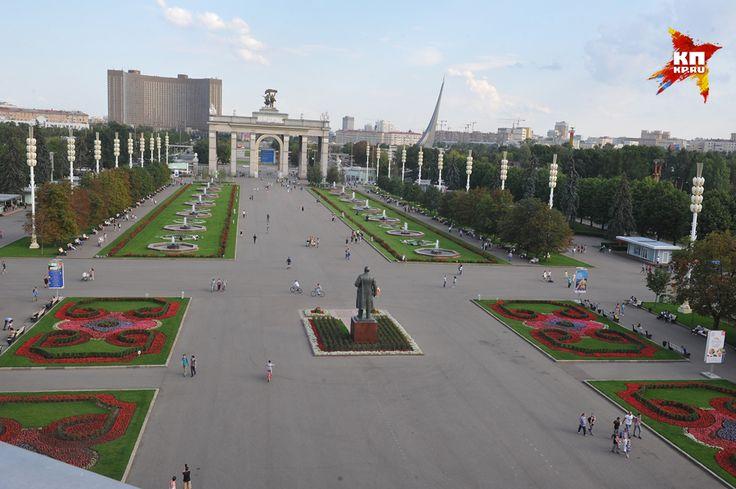 Вид с крыши павильона «Центральный» Фото: Михаил ФРОЛОВ