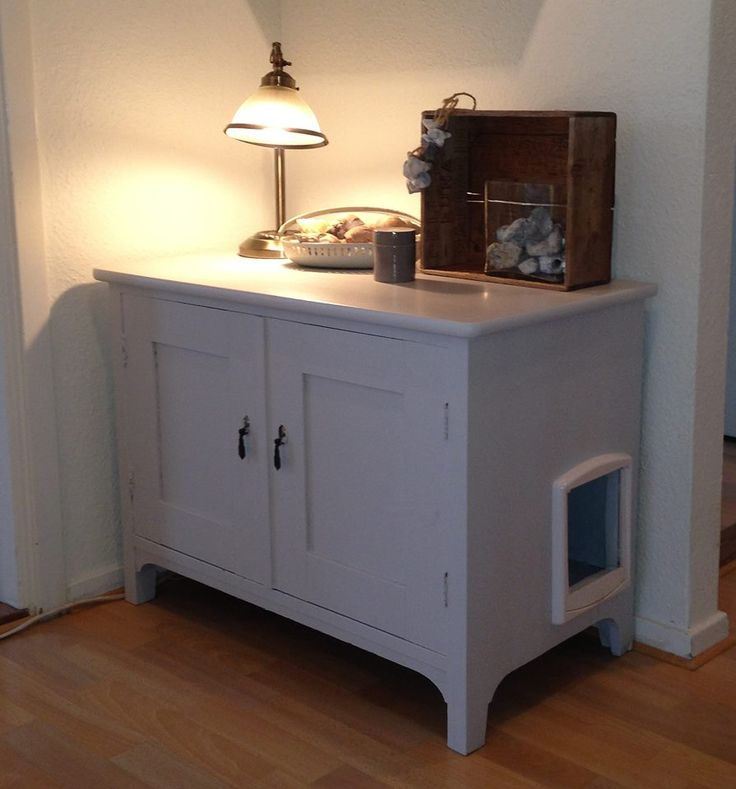 Very Clever Way To Hide The Cat Litter Box 895 X 960
