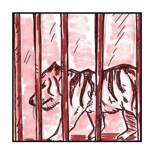 """Para los animales en circos, no existe nada como """"refuerzo positivo"""", sino solo grados variables de castigo y privaciones. Para obligarlos a realizar esos trucos sin sentido y físicamente incómodos, los entrenadores usan látigos, collares apretados, bozales, picanas eléctricas, barras de metal con puntas de gancho y otras herramientas propias del negocio del circo para provocar dolor."""