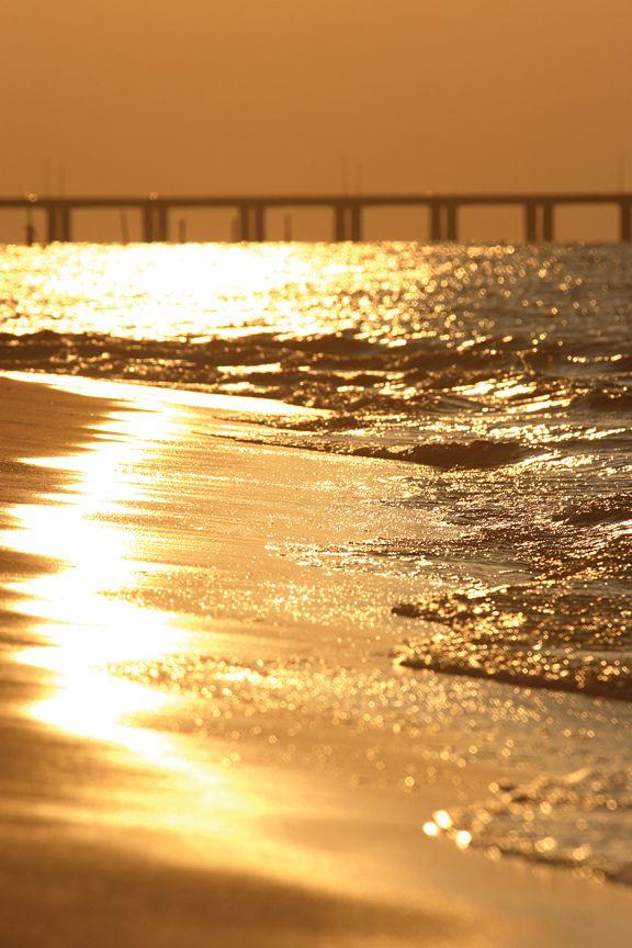 Gold Sparkles . Chesapeake Bay