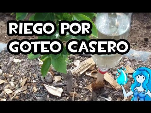 Cómo hacer un sencillo riego por goteo casero con botellas de plástico / EcoInventos.com