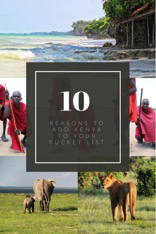 Kenya is a beautiful and diverse country famed for its distinct wildlife and nomadic tribes – read these ten reasons why you should add Kenya to your bucket list!