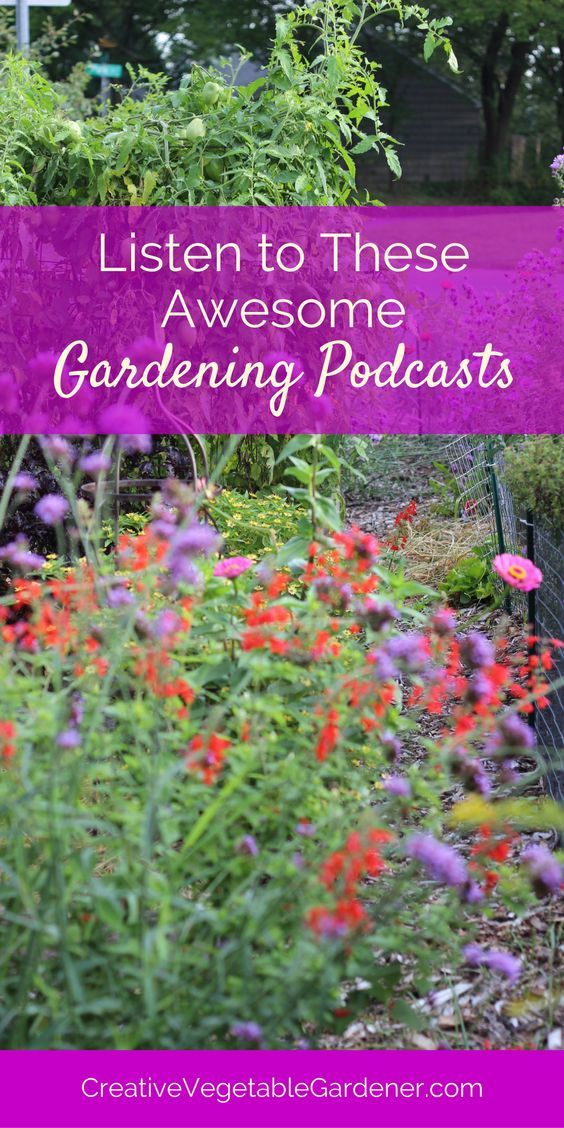 Check out these awesome podcasts to learn how to be a better gardener.