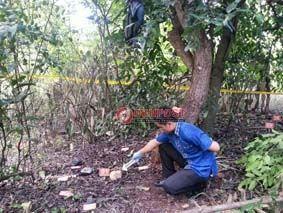 Ditemukan Kerangka Manusia di Gilimanuk - http://denpostnews.com/2017/03/17/ditemukan-kerangka-manusia-di-gilimanuk/