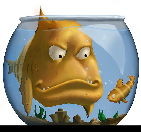 83 best clip art my style sea creatures images on for Big fish little pond