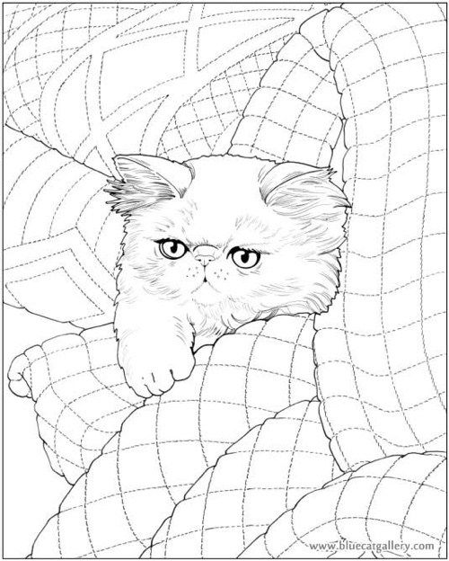 Coloring Pages For Quilt Blocks : 209 best art: cat coloring images on pinterest