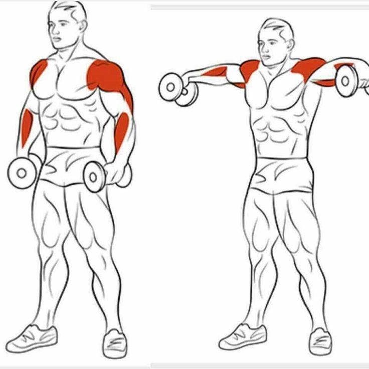 мадонна упражнения для дельты в картинках с гантелями смутило