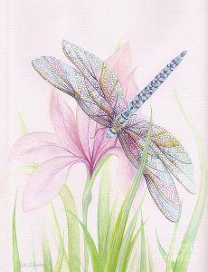Sheer Wings Painting  - Sheer Wings Fine Art Print | Art: Dragonflys | Крылья, Изобразительное Искусство и Художественные Принты