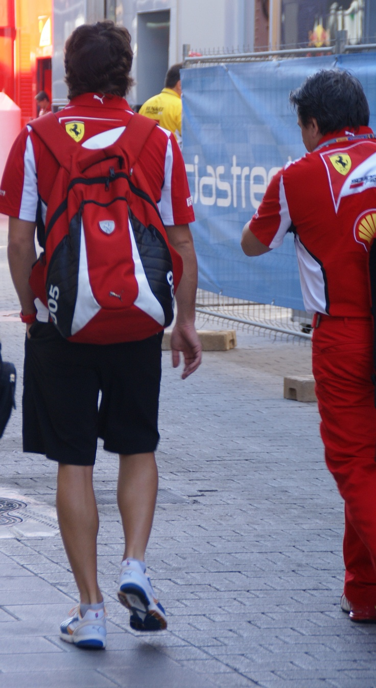 Fernando Alonso, Formula One world champion