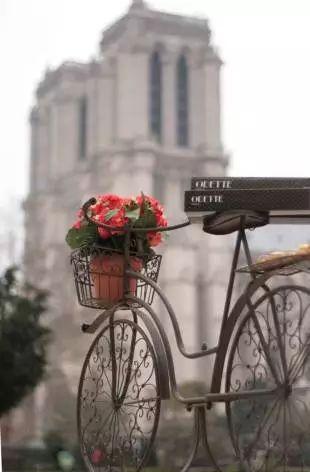 Food bike: a nova modinha nos casamentos