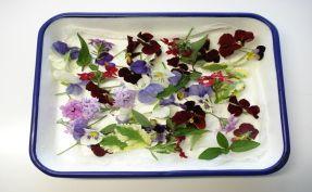 ハーブティと花の砂糖漬けのページ~ハーブティと花の砂糖漬け