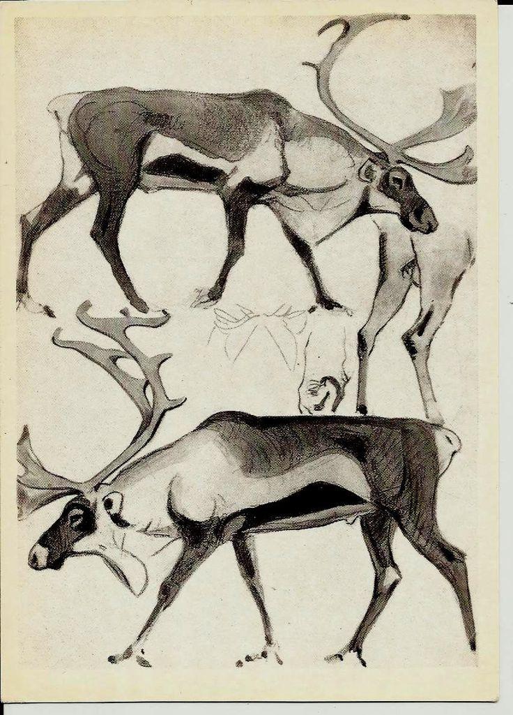Reindeer - Drawing Animal - Vintage Russian Postcard art work  V. Vatagin unused by LucyMarket on Etsy