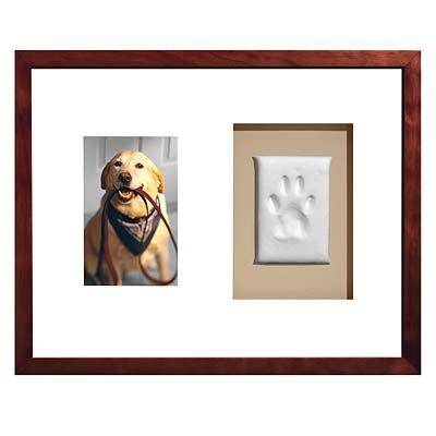 Registre a pata do seu cachorro no gesso e enquadre! Ótima ideia para sua parede... <3