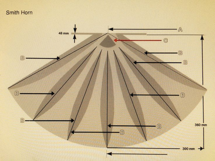 http://www.audioheritage.org/vbulletin/showthread.php?27649-Reconstructed-Smith-Horn-Plans