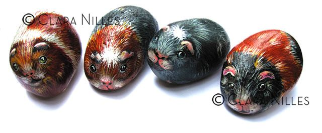 Painted Rocks - Guinea Pigs By Clara Nilles