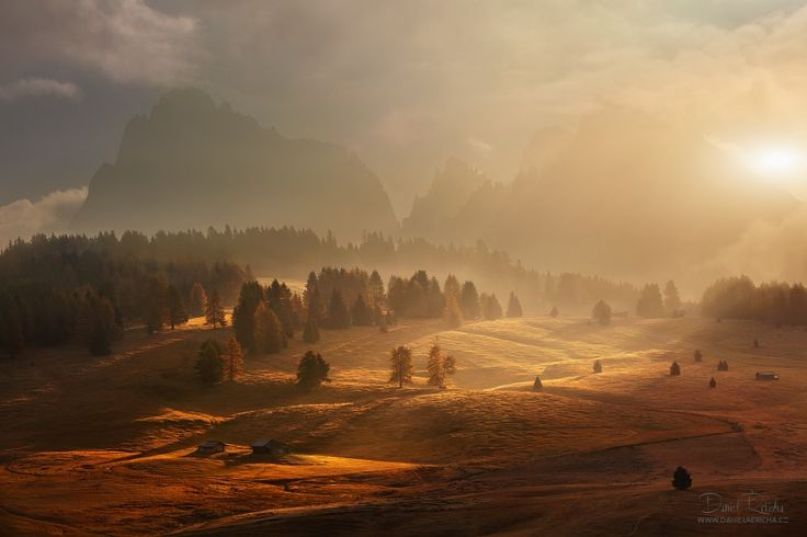 Morning on alpine meadow. Photo of the autumn Dolomites.   www.danielrericha.cz…