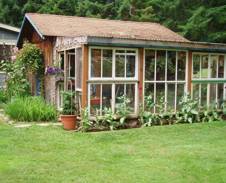 My greenhouse from reclaimed windows reclaimed windows for Reclaimed window greenhouse