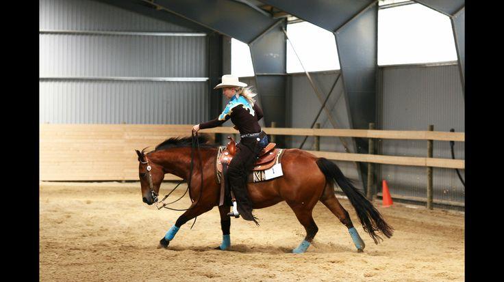 Pony Bueno // DLWR show
