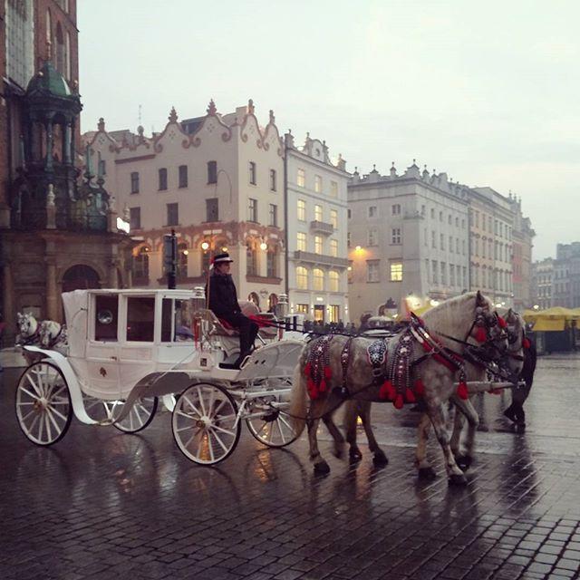 Главная площадь Кракова - место, где время не имеет значения. Дыхание истории ощущается в каждом дуновении ветра, а под копытами лошадей стучит сердце старинного города #дилижанс #времявспять #путешествие #Краков #Польша #traveling #Krakow #Poland #diligence #historicalplace #romantic #instatraveling