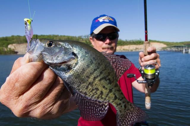 17 best images about fishing lures reviews on pinterest for Crappie fishing lake of the ozarks