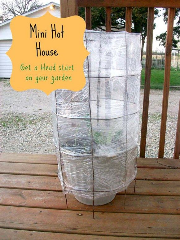 Best 25 diy greenhouse plans ideas on pinterest greenhouse 84 free diy greenhouse plans to help you build one in your garden this weekend solutioingenieria Image collections