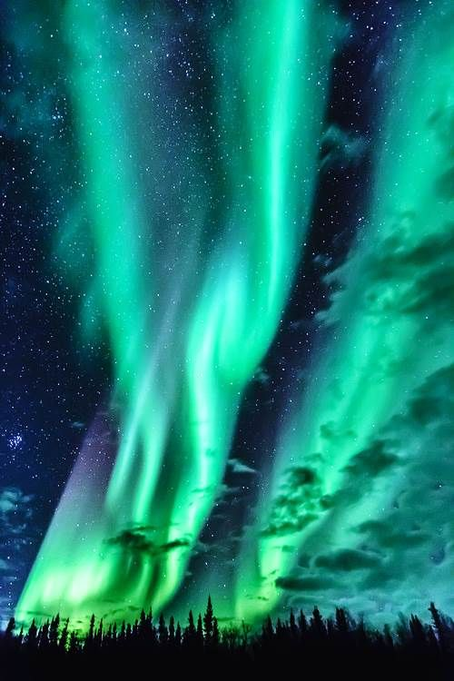 Can someone do my essay the aurora borealis