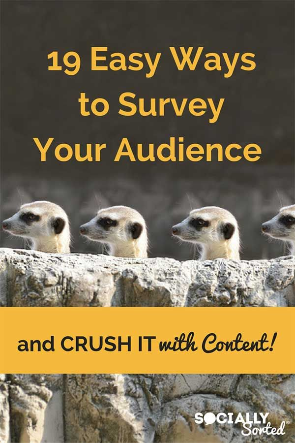 19 Easy Ways to Survey Your Audience and then Crush it with Content - @sociallysorted