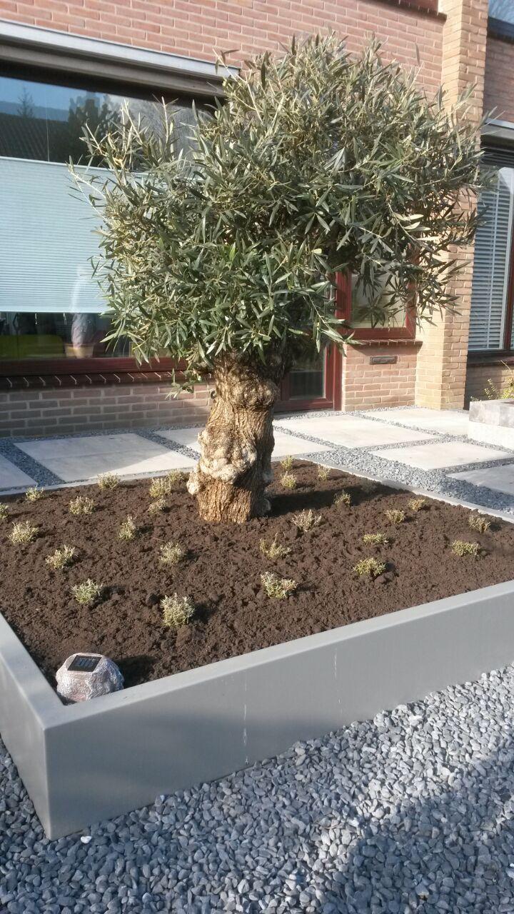 Aanleg Aluminium plantenbak, kan in elke ral kleur worden geleverd