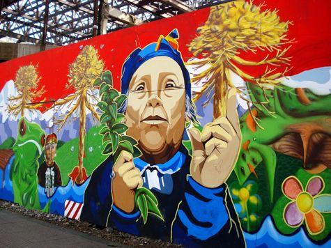Southern Chile: Mapuche woman, Machi, and Araucaria trees