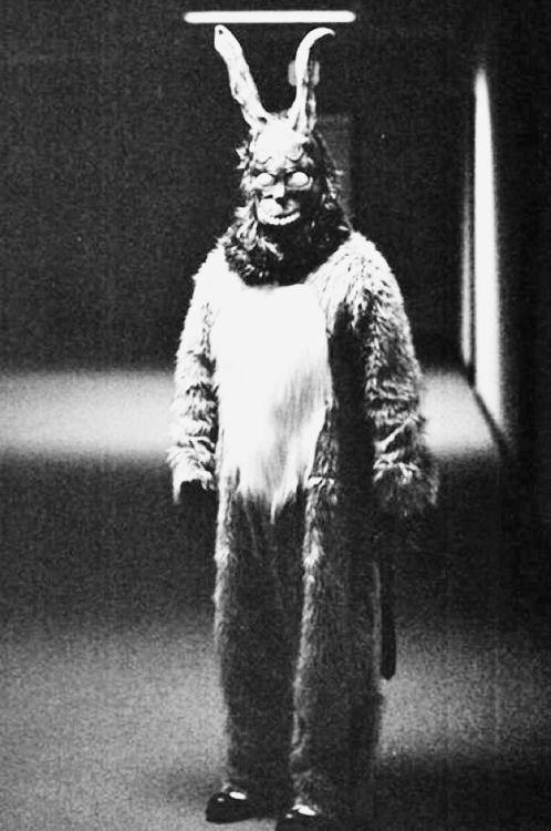 Donnie Darko (2001) ::: #Movie #Poster
