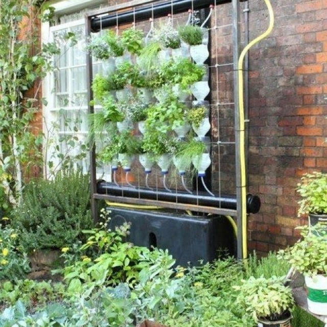 Pretty Awesome Vertical Garden System